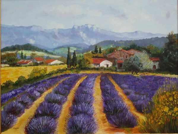 Le Plateau De Valensole Poèmes En Provence