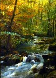 ruisseau-dans-la-foret_500x500