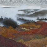 Ivan Eyre - Warm Wood Cloud - 1991