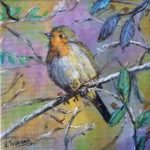 Oiseau-virginie-trabaud