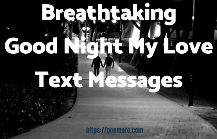 60+ Breathtaking Good Night Text Messages For Him or Her