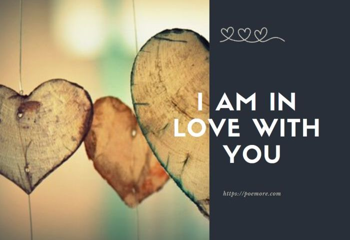 2019 I Am in Love With You Messages and Quotes