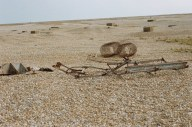 Debris on the shingle