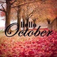 Un pensiero al giorno;  Hello Ottobre