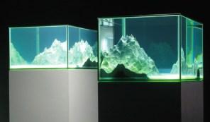 Aquarium-6