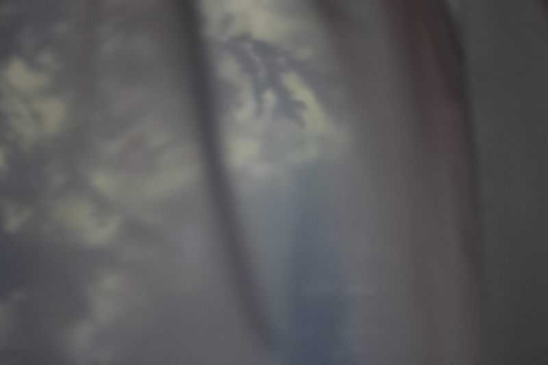 art gallery at poetic earth month-hemlocks through the side porch veil by L.L. Barkat-2