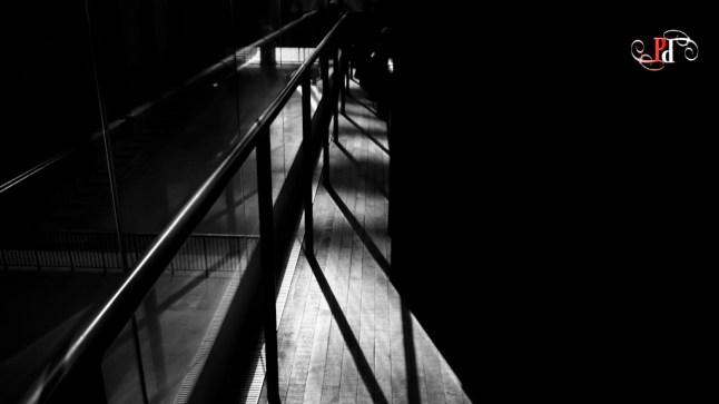 Shadow Stalker-42