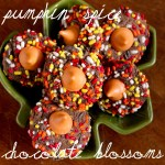 pumpkin spice chocolate blossoms