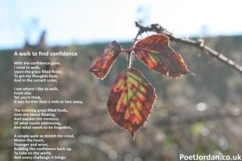 15 A walk to find confidence Poet Jordan Volume 31
