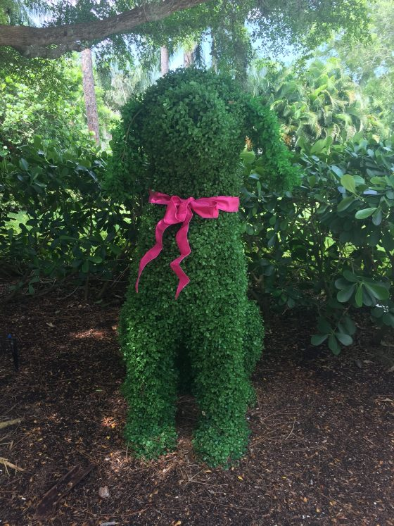 Dog Topiary