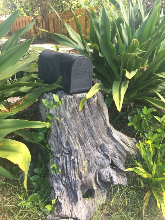 Mailbox on tree stump