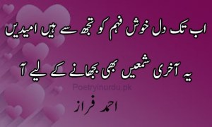 poetry in urdu for lovers