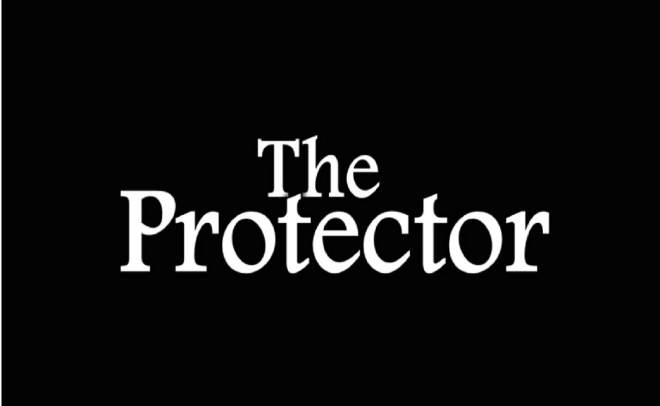 Zaščitniški roman Levi Garrison