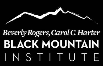 BMI Logo Black