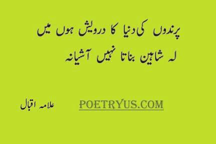 iqbal poetry on shaheen