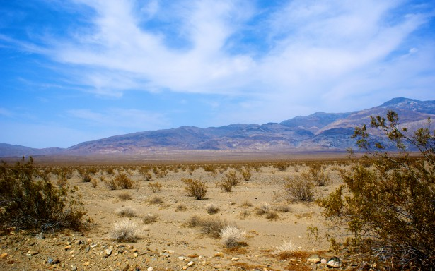 desolation-of-mojave-desert