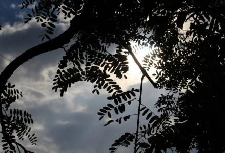 Sky Spirits