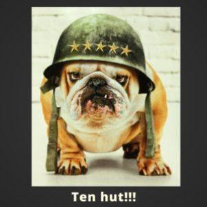 Ten-hut!!!