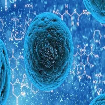 capacitatea virusilor multiplicata rapida accentuata