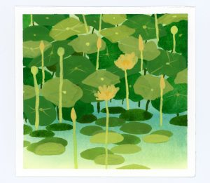 Aquatic plants gouache illustration