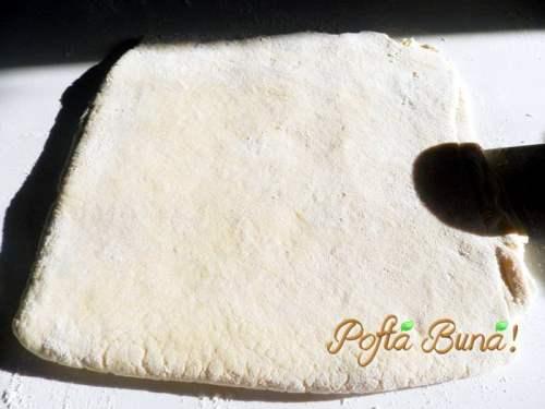 scones-reteta-simpla-pofta-buna-gina-bradea (8)