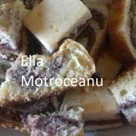Pandispan (de Ella Motroceanu)