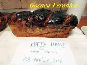 GOSNEA V