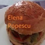 Hamburger (de Elena Popescu)