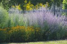 FlowersHiddenLakeGardenMisc 059