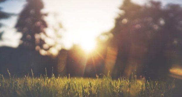 1 августа – Макринин день или День Макриды