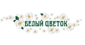 В Ялте - акция «Белый цветок»