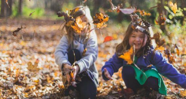 Севастополь - среди популярных городов для поездок со школьниками на осенние каникулы