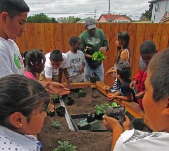 Board member Shyaam teaches kids how to garden