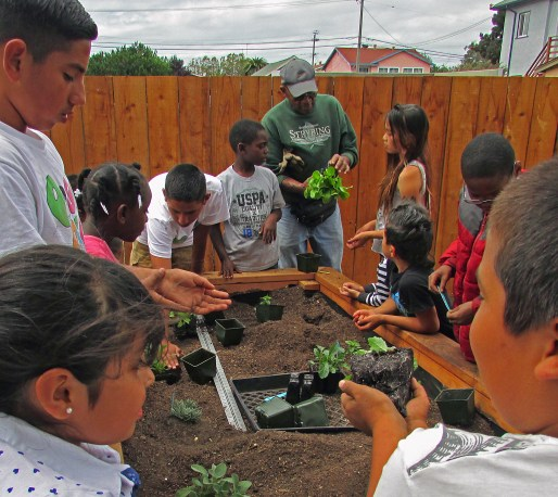 Board member Shyaam teaches kids how to garden