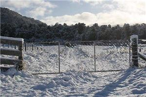 Winter comes early to Christchurch and outstays its welcome