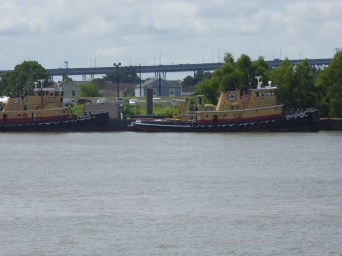 Some Tug boats