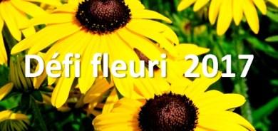 Défi Fleuri 2017