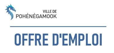 OFFRE D'EMPLOI – Directeur(trice) des services financiers