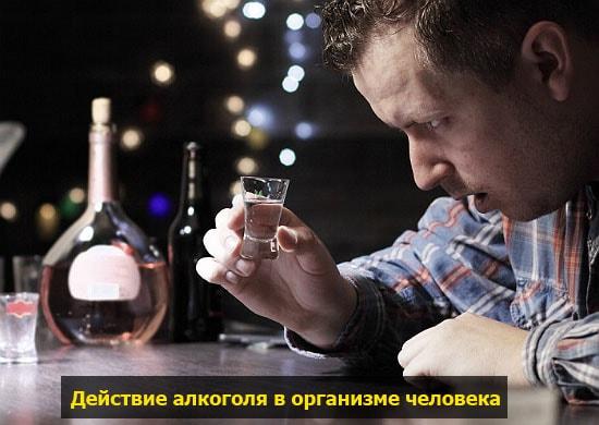 Сколько времени держится вино в организме. Сколько выветривается вино из организма