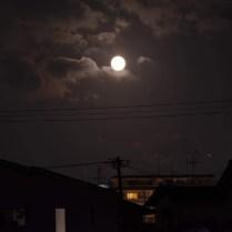 中秋の名月 Photo E.Matsuoka 撮影地 福岡市 撮影日 2020.10.01