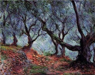 """Grove of Olive Trees in Bordighera"" (1884), by Claude Monet"