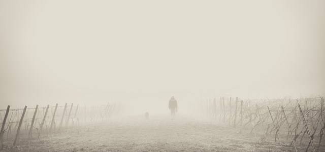 Ομίχλη πέφτει (Γιώργος Ιωάννου)