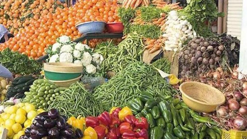Gorgol formation sur les techniques de protection des légumes