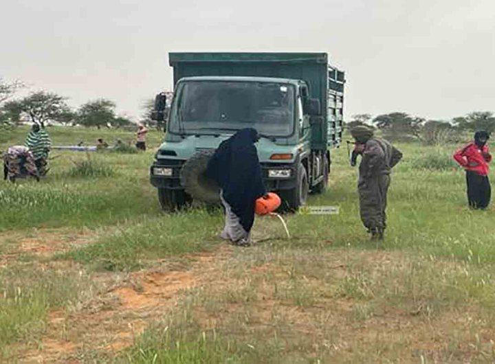 Trarza : Lancement d'une campagne de reboisement de 50 hectares