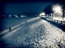 night-walk-07