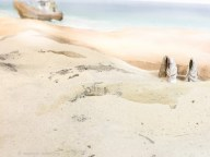 shore 06