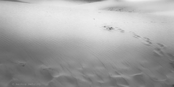 VN dunes 01