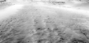 VN dunes 10