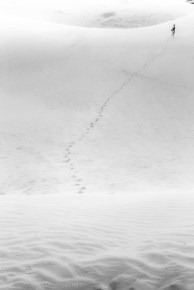 VN dunes 11