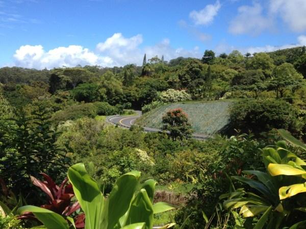Hana Garden of Eden, Maui